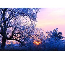 Blue Lonely Winter, Brannon Mt. NW Arkansas, USA Photographic Print