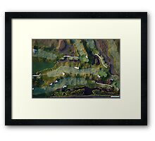 Mystery Landscape Framed Print