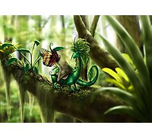 Little Forest Guardian - Dragon and Butterfly Photographic Print