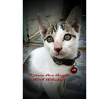 Kittens Are Angels With Whiskers Photographic Print