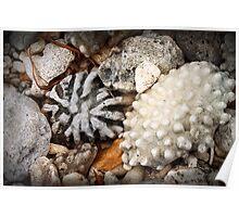 Shore thing II : rocks Poster
