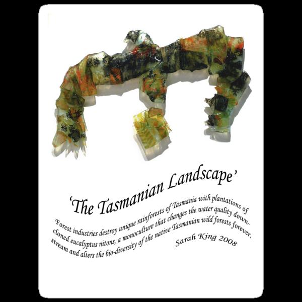 the Tasmanian Landscape by cradlemountain
