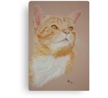 Lil Puss Canvas Print
