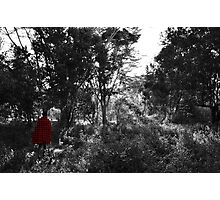 Experience Nature Photographic Print