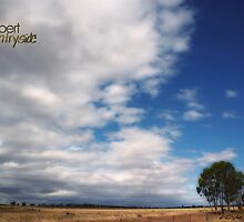Country Sky © Vicki Ferrari Photography by Vicki Ferrari