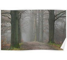 Venturing on a misty path ... Poster