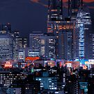Twilight in Tokyo & Mount Fuji decided to put in an appearance by Alfie Goodrich