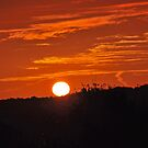 Sunrise in Hoyland! by Trevor Armstrong