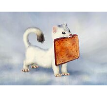 Toast Weasel Photographic Print