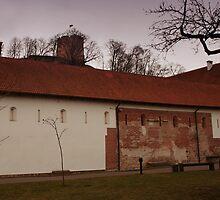 Vilnius Castle ensemble by Antanas