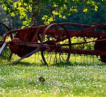 Ploughing Over by Pamela Jayne Smith