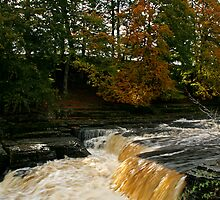 Aysgarth Force by jdphotos