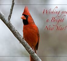 Wishing you a Bright New Year! by Bonnie T.  Barry