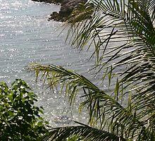Paradise...Island by Christine Frydenborg Dargon