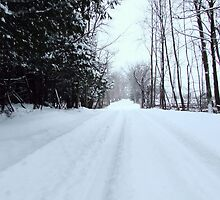 Country Road In the Snow by marchello