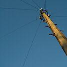 telephone pole 2 by go sugimoto