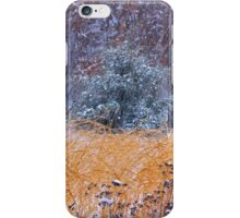 Winter Color iPhone Case/Skin