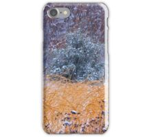 Winter Color iPhone Case/Skin