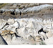 The Badlands, Alberta Photographic Print