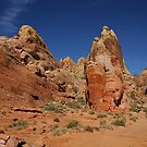 Valley of Fire - The White Domes by Anne-Marie Bokslag