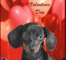 Rudy's Valentine by CardLady