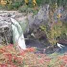 Snoqualmie Falls /Discover The Beauty of Nature Around Me by WaleskaL