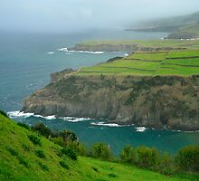 Coastal landscape, Azores by Gaspar Avila
