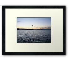 Birds of Sunset Paradise Framed Print