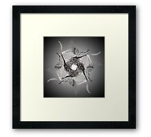 Abstract Peacock Cult Framed Print