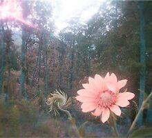 Flower in Wonderland. by bcsimon89