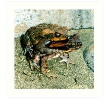 Frogs Humping Art Print