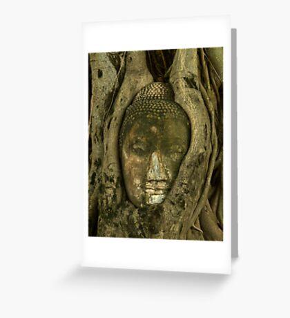 Budda Head in Tree Greeting Card