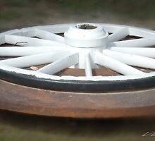The Wheel Deal © Vicki Ferrari Photography by Vicki Ferrari