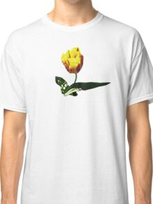 Yellow and Red Tulip Classic T-Shirt
