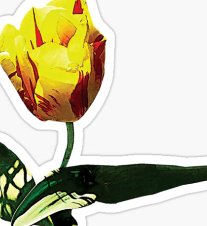 Yellow and Red Tulip Sticker