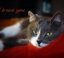 I Trust You © Vicki Ferrari Photography by Vicki Ferrari