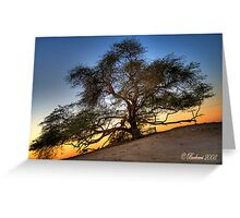 Tree Of life (HDR) Greeting Card