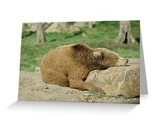 Resting  Greeting Card