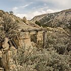 Dilapidated Stone Building Blending Into the Hill by Sue Smith