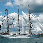 INDONESIAN TALL SHIP, DEWARUCI, NEWPORT, RHODE ISLAND by Edward J. Laquale