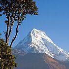 Annapurna by Walter Quirtmair