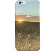 Maria Island iPhone Case/Skin