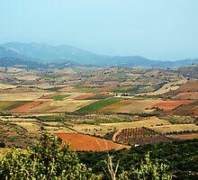 The Plains of Spain by Alison Cornford-Matheson