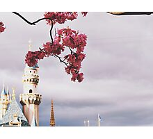 Spring time at Disneyland Photographic Print