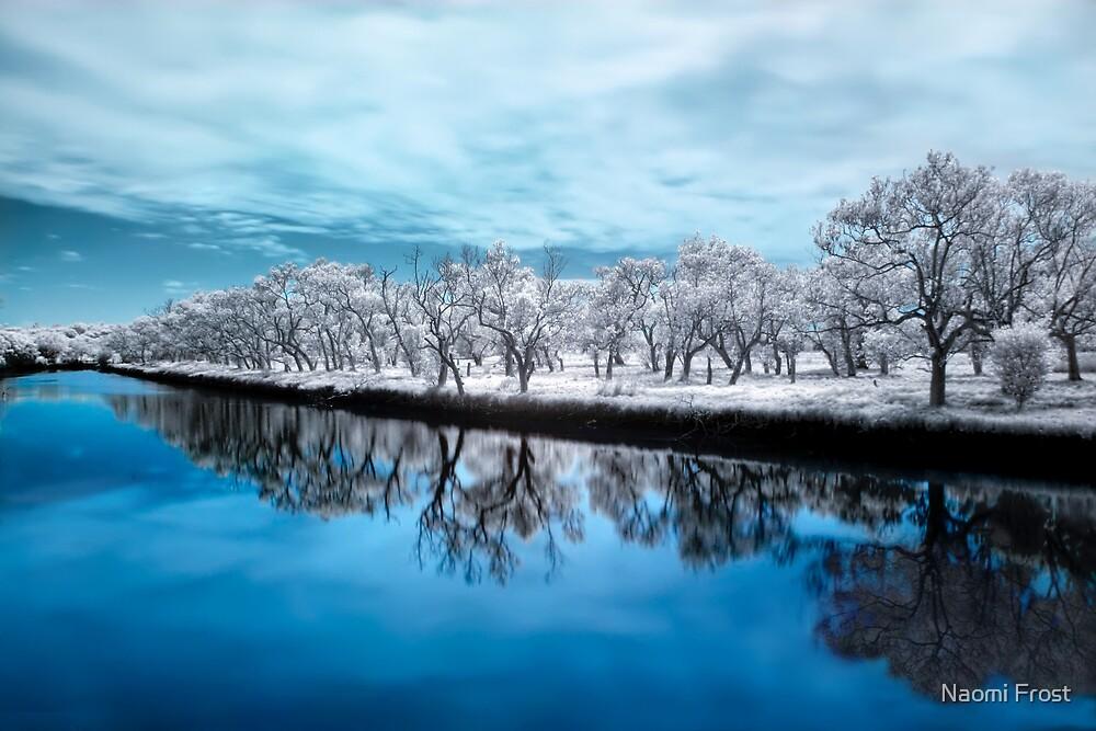 True Blue by Naomi Frost