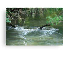 Cascade - Upper Manning River NSW Canvas Print