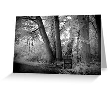 infra red benches Greeting Card