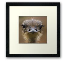 who you lookin at? Framed Print
