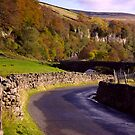 Yorkshire Dales Road by Trevor Kersley