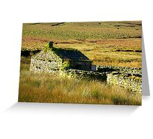 The Hermitage #2 Greeting Card